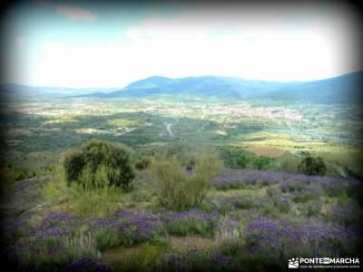 Cebreros-La Merina-Río Alberche;rio tajo montrebei mar de ons reportaje